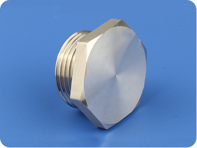 Stainless Steel Hex Plug (PG Thread)